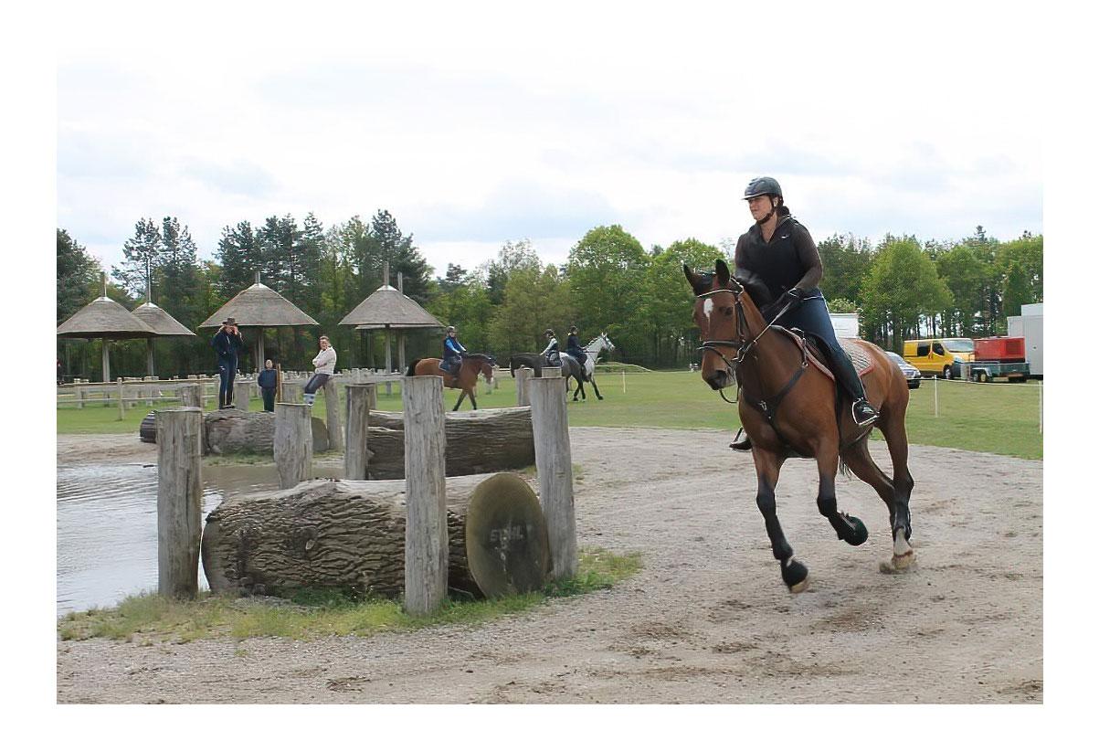 Vera Grevelink Practice to Perform Rijles Training Instructie Begeleiding Celeris Rijlaarzen Asten Paardrijles Rijles Cross Dressuur Springen Crosscountry